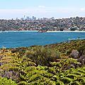 Manly dans la baie de Sydney