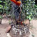 Envoutement d'amour tres rapide et efficaces du meilleur marabout ifadola roland