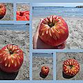Pomme à la plage
