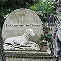 Le cimetière des chiens à asnièrers