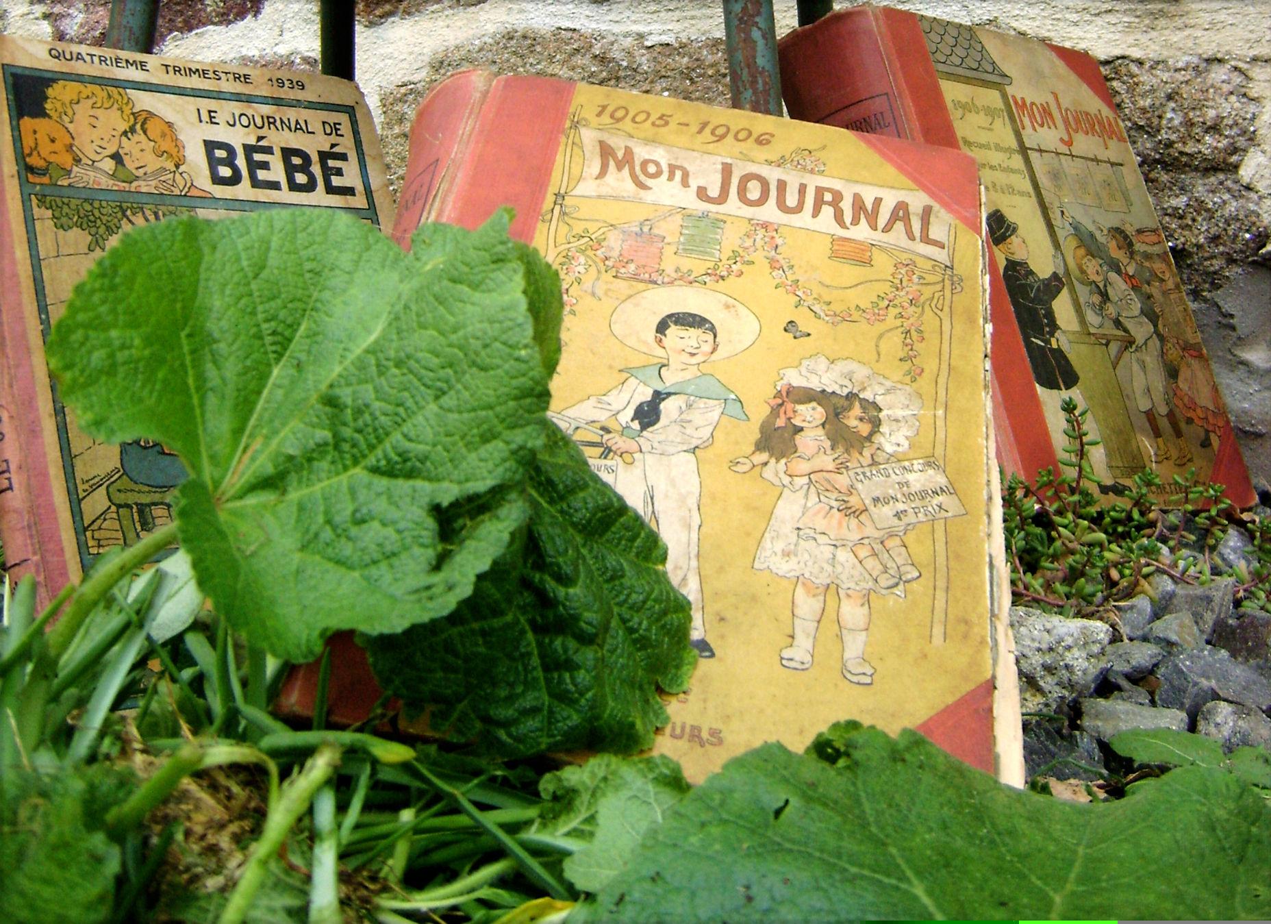 Mon Journal: le charme des livres anciens