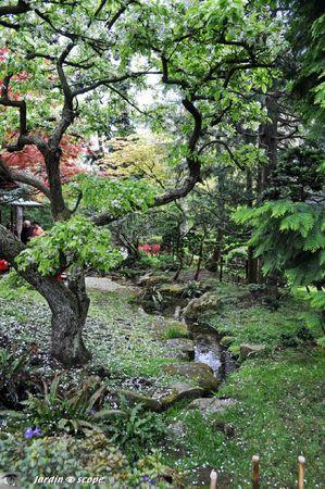 Jardin-Albert-Kahn-060