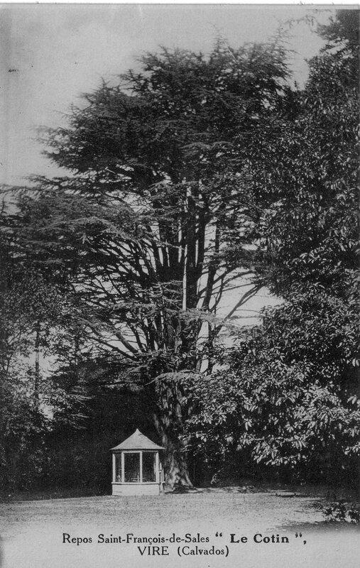Jardin du Cotin