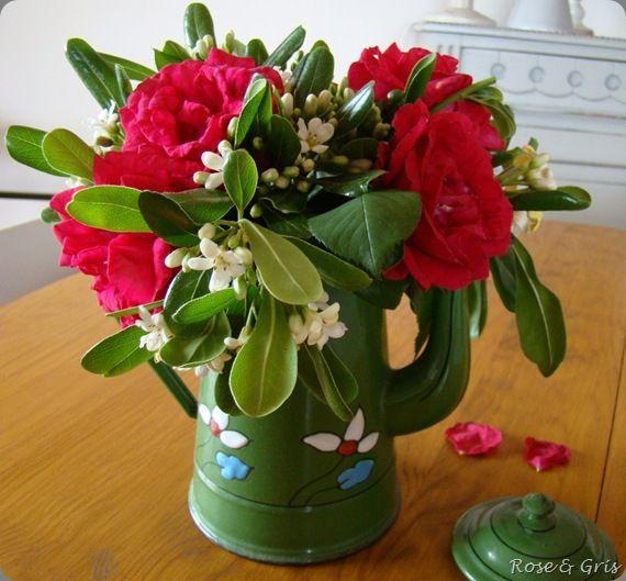 roses et oranger du mexique dans cafetière