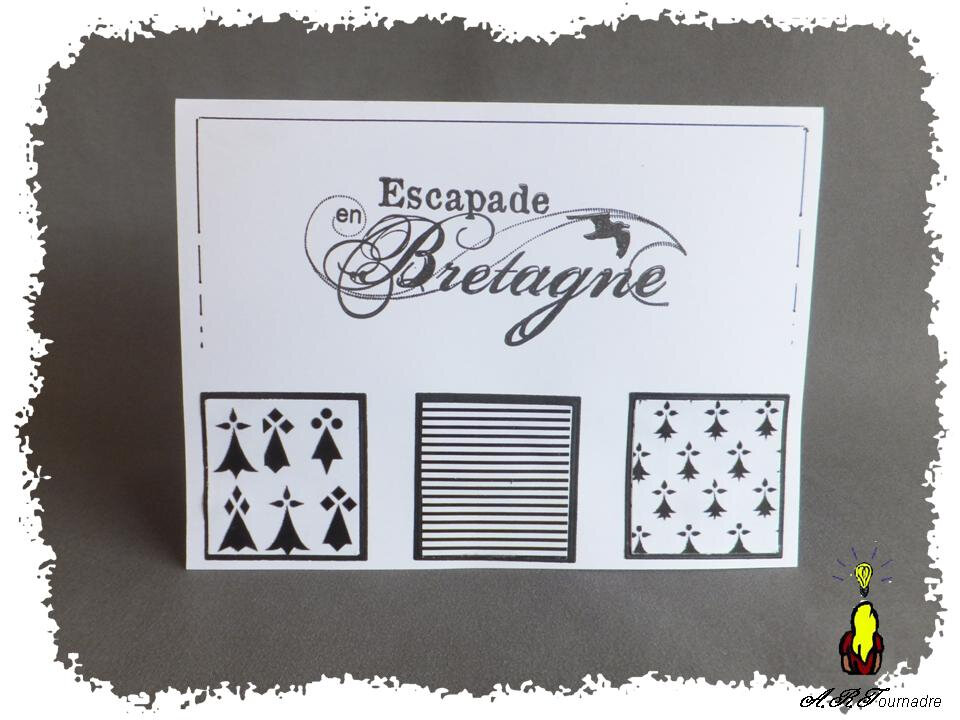ART 2014 08 carte bretonne 2