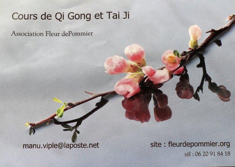 IMG_0043 - Copie