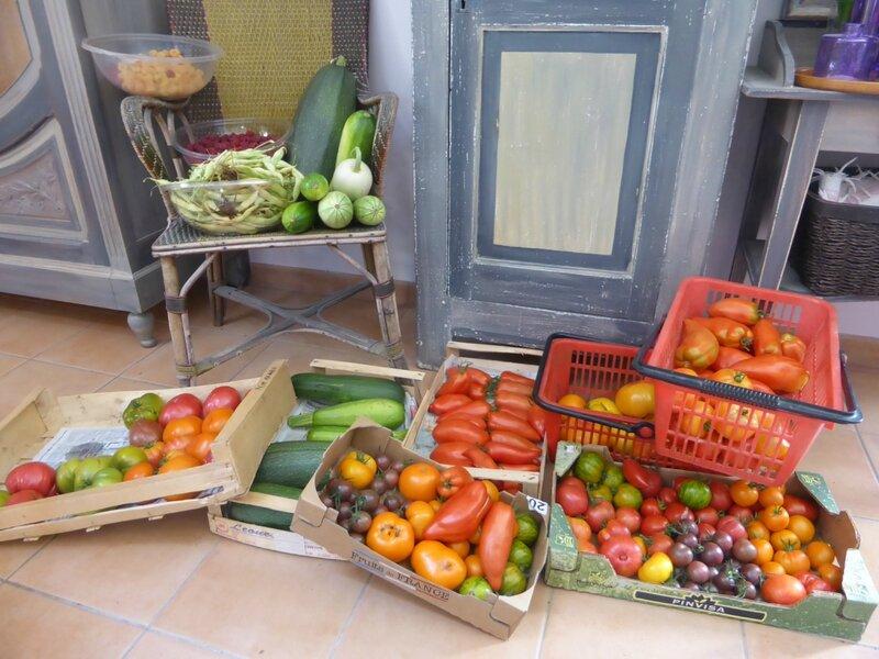 20-tomates et récolte du jour (3)