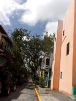 JOUR 4 RETOUR DE RIO PIEDRAS(3)