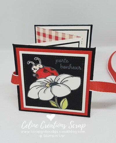 Mini à enveloppes Petite cocinelle -2