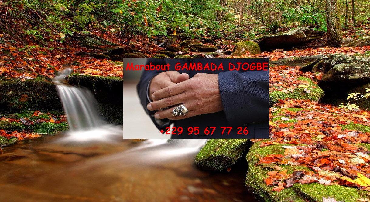 LA BAGUE ABUNDANTIA CONFECTIONNER PAR LE GRAND MARABOUT GAMBADA DJOGBE Whatsapp/Téléphone : +229 95 67 77 26