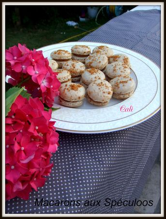Macarons_aux_Sp_culoos___037