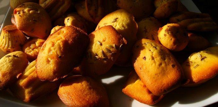 madeleines 2
