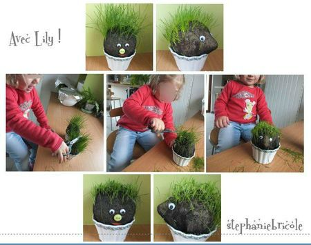 DIY TETE GAZON