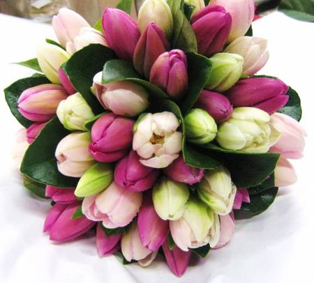 BOUQUET_TULIP