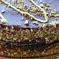 Royal chocolat pistache