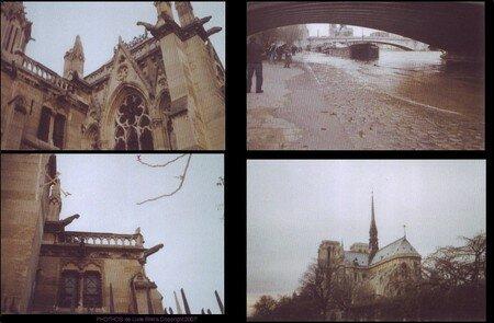 gargouilles_Paris