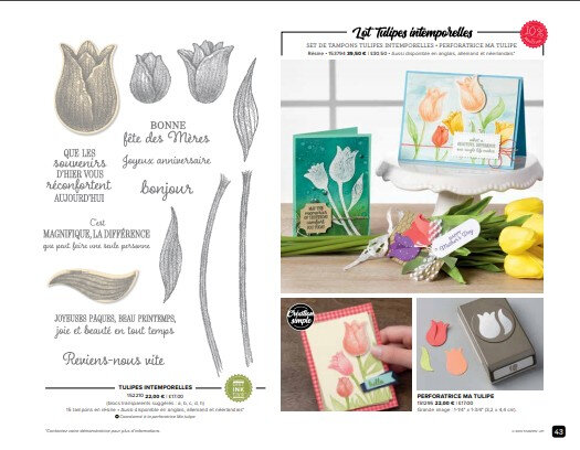 page tulipes 1