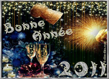 carte_bonne_annee_2011_9__d_clics_disa