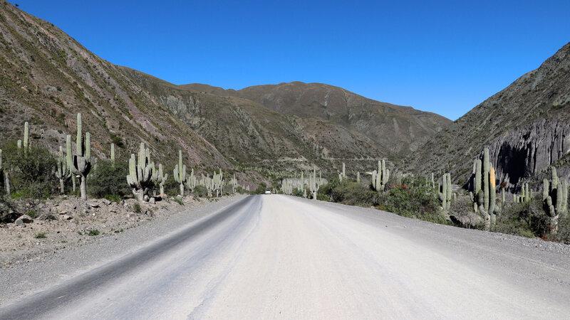 Quebrada del Toro10