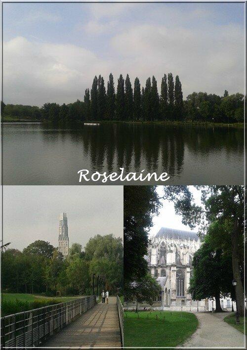 Roselaine144 Amiens
