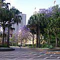 Le Parc devant le Museum d'Art Contemporain
