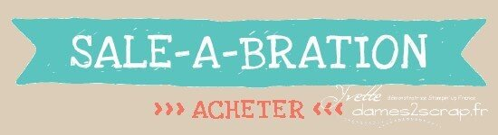 demoHeader_SAB_Shop_demo_Dec0113_FRaacheter