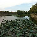 Hue - Royal Palace3