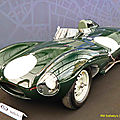 Jaguar D #XKD520_01 - 1955 [UK] HL_GF
