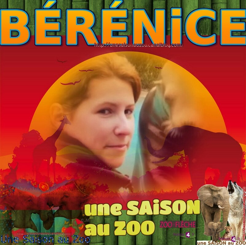 _ 0 MONTAGE BAMBOU BERENiCE