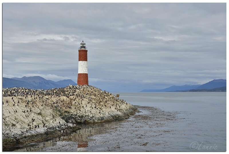 _Argentine_303_Ushuaia_canal_Beagle_phare_Eclaireurs