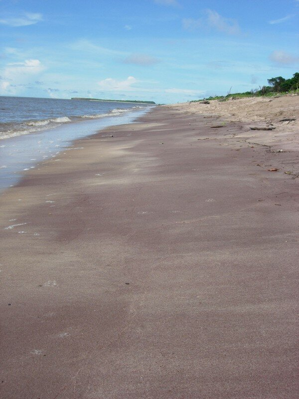 sable prune plage des Hattes