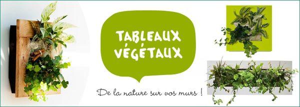 778x278_tableaux-vegetaux