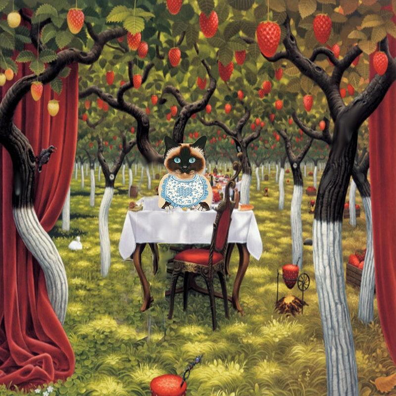 carte chat l'arbre à fraise