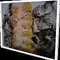 Flans de sole, champignons fondants & sauce forestière