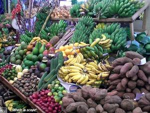 9049_R_gimes_de_bananes