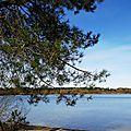 Lac Arjuzanx 05021622