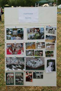20110629105008_concours photo du 4 juin 2011 (2)