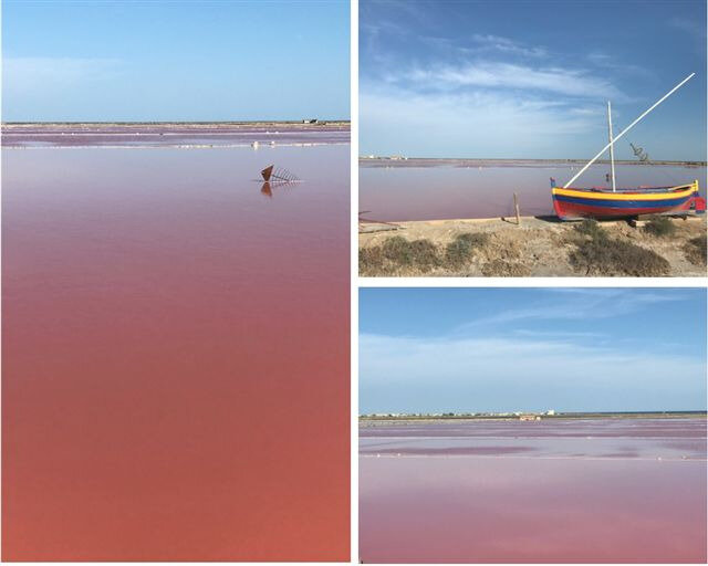 Les Salins de Gruissan ©Kid Friendly