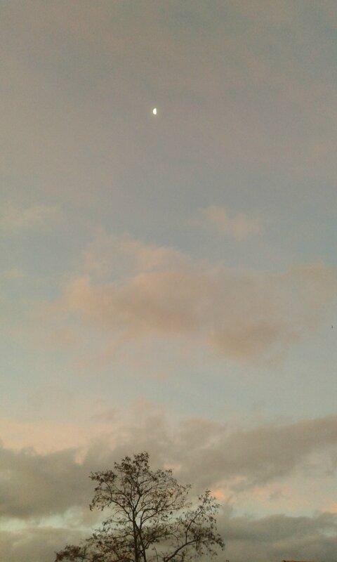 Ciel du 14 11 2014 (7)