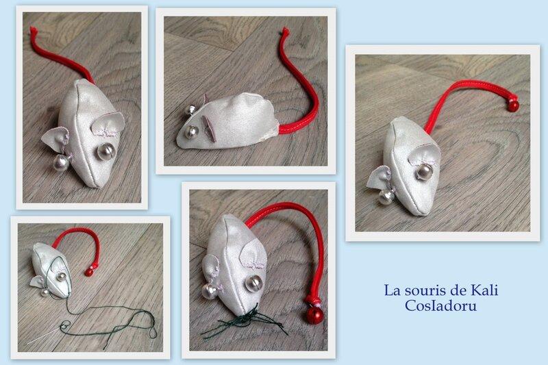 La souris de Kali1