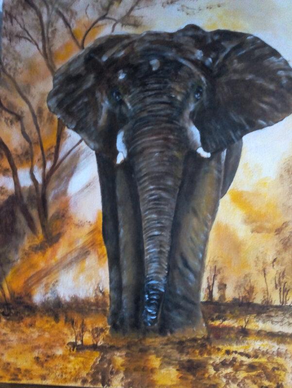 IMG_20200217_173017 elephant