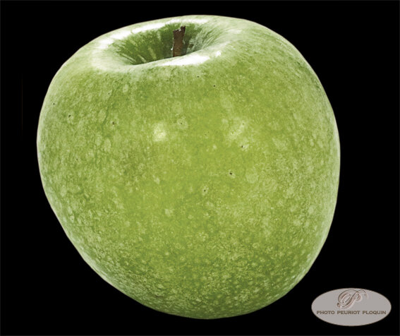 POMME_GRANNY_SMITH