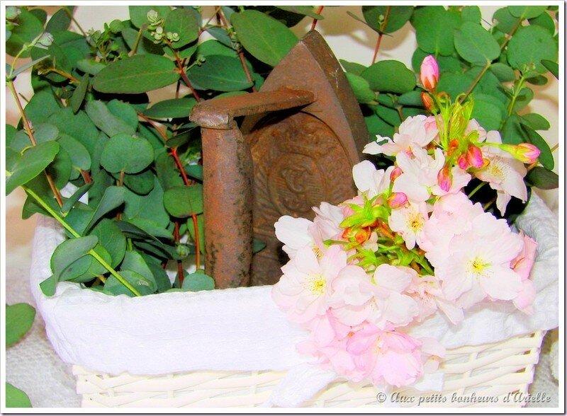 Fer à repasser de nos grands-mères (6)