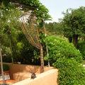 un rideau de buis sauvé de la décharge tamise une terrasse