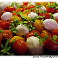 Salade de tomates grillees