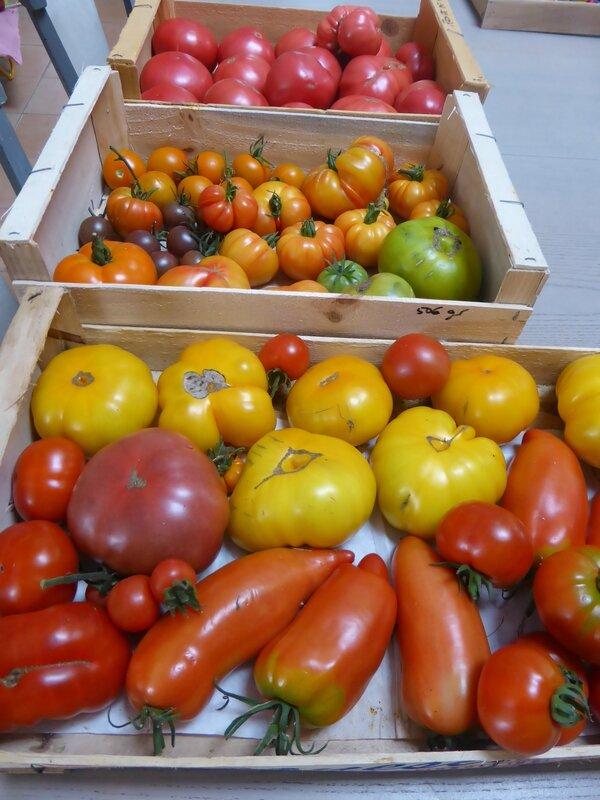 20-tomates (12)