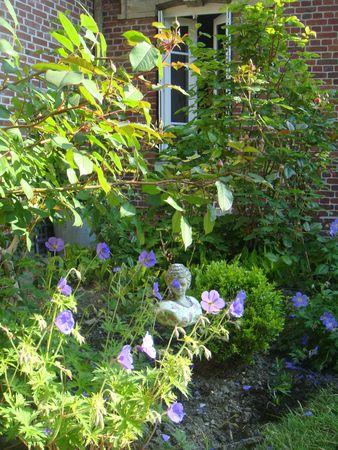 jardin-e