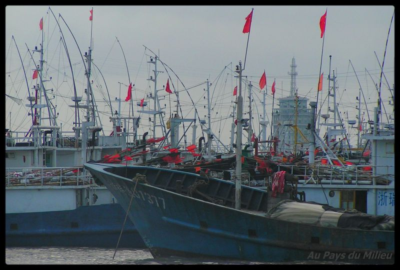 Archipel de Zhou Shan sur le port 03