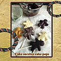 Cake sucettes cake pops