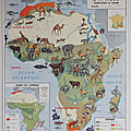 Collection ... carte afrique / europe